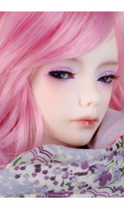 BJD Zaoll - Basic Dreaming Luv