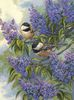 Chickadees and Lilacs Dimensions