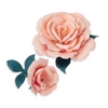 *Sizzix ROSE FLOWER Thinlits Die Set 658411