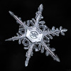 Sky Crystals: Unraveling the Mysteries of Snowflakes (book)