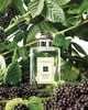 Духи Jo Malone Blackberry & Bay