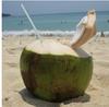 коктейль из кокоса