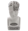 Бюст By Petrantoni «Phrenology» от Seletti