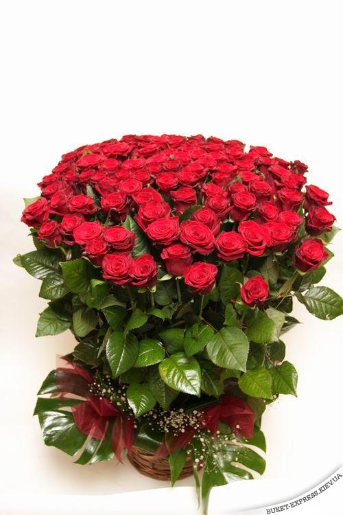 Букет роз с поздравлением дня рождения фото 54