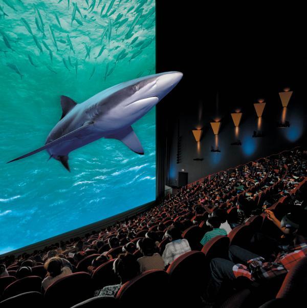 Окунись в мир виртуальной реальности в сети кинотеатров кино-5d