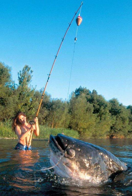 картинки в контакте про рыбалку
