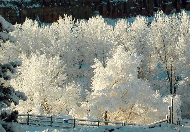 Зимой солнце сквозь слёзы улыбается - Фото 27 - Стихи русских поэтов о зиме - Природа - Фотосайт