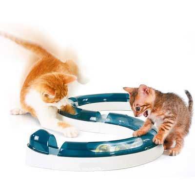 Игрушки для кошек своими руками с