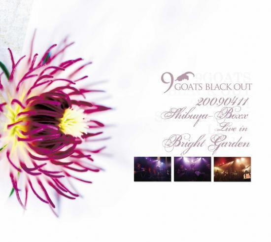 noegne piger billeder цветы № 35530