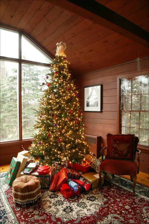 Во что елку ставят на новый год