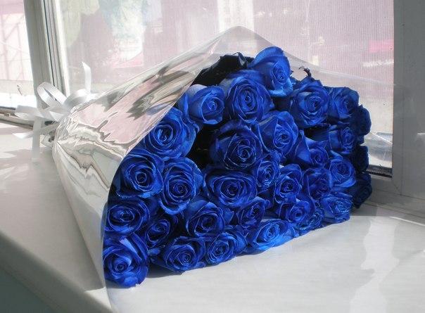 Открытка с синими розами 9