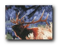 LANARTE 21833 Red deer at dawn